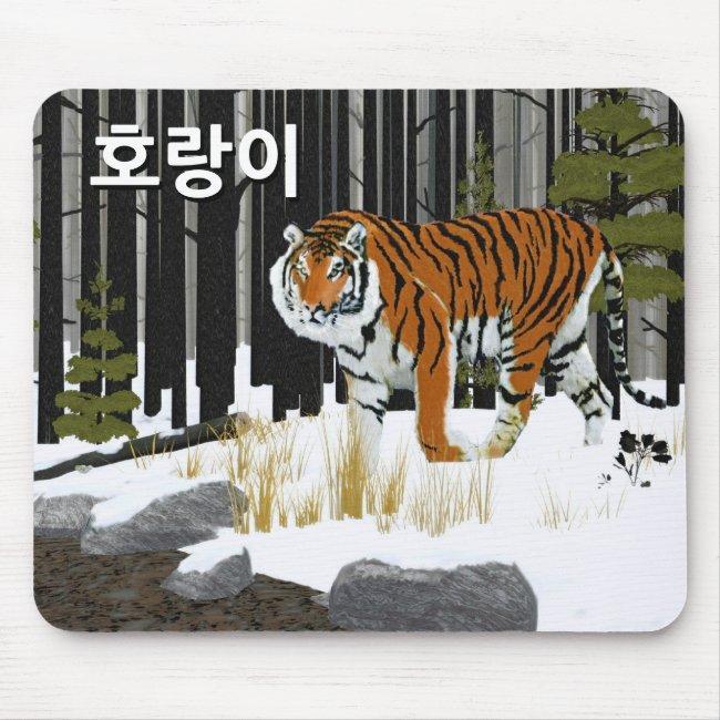 호랑이 (Siberian Tiger)