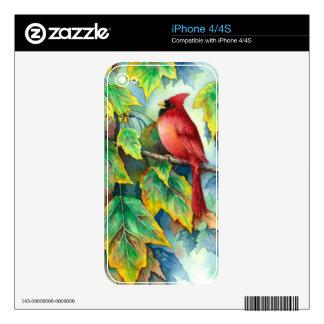 0004 Cardinal Decal For iPhone 4