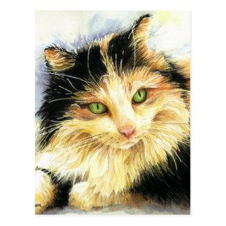 0010 Calico Cat Postcard