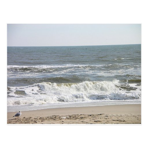001 LBI waves Post Card