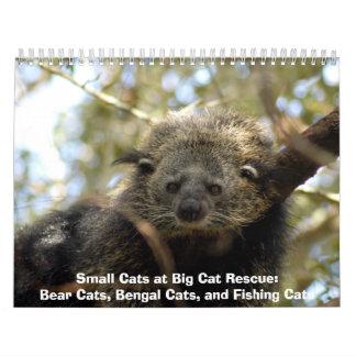 002Bearcat, Small Cats at Big Cat Rescue:Bear C... Wall Calendar