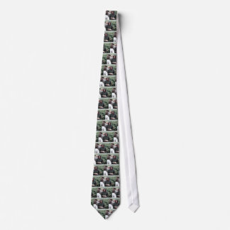 006060 Princess Diana Lochmaddy 1985 Neck Tie