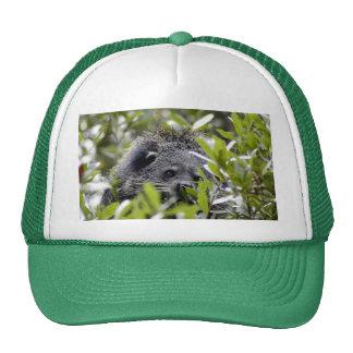006Bearcat Trucker Hat