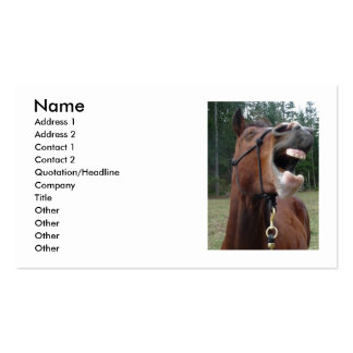 007, Name, Address 1, Address 2, Contact 1, Con... Business Card Templates