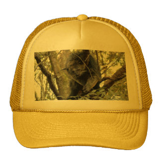 007Bearcat Trucker Hat