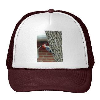 012510-6-AH TRUCKER HATS