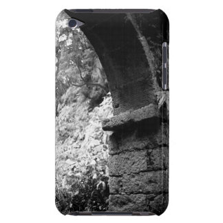 01260.jpg barely there iPod cover