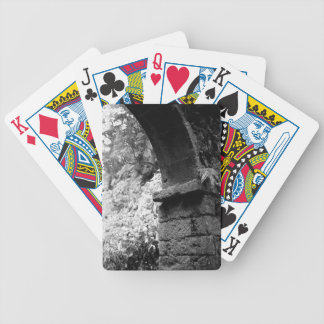 01260.jpg bicycle playing cards