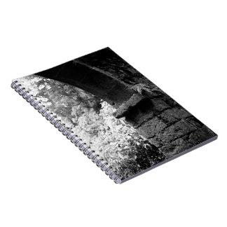 01260.jpg spiral note books