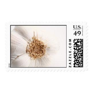 01458_n.jpg postage stamps