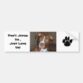 019 (1) perfect puppy pic of Brandy Car Bumper Sticker