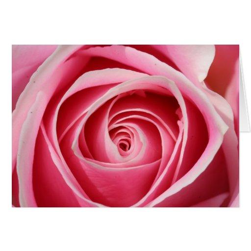 01 color de rosa rosados tarjeta de felicitación