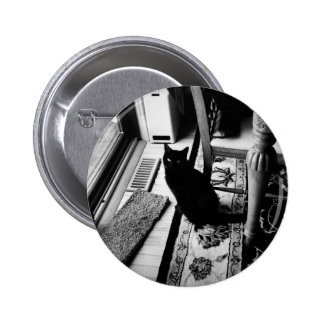 01 - May - 2011 Pinback Button
