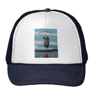 020311-160A-AH MESH HATS