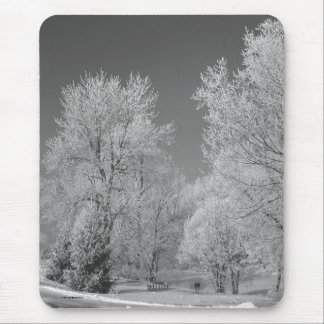 020810-72-AMP MOUSE PAD