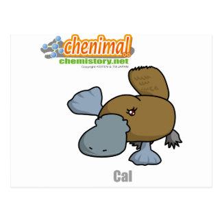 020 Cal of Chenimal (Calcium) Postcard