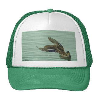021310-45-AH HAT