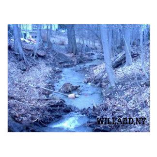 0218081443, WILLARD,NY POSTCARD