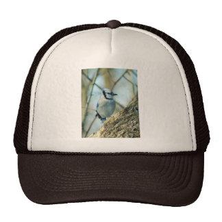 021910-167-AH TRUCKER HATS