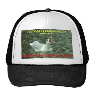 022310-76-AH MESH HATS
