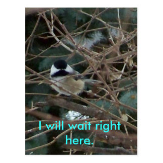 027, I will wait right here. Postcard