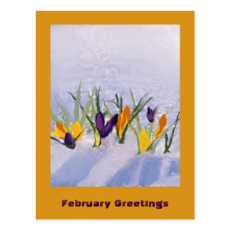 02 February Postcard
