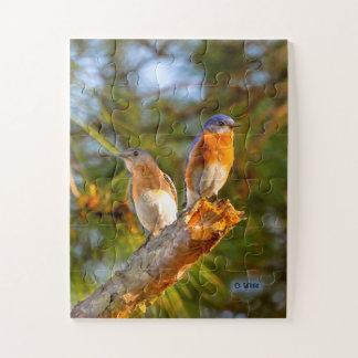 040 Bluebird Courtship Puzzle 11x14 Kids