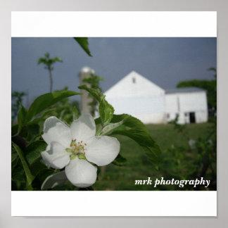 042 (2), mrk photography poster