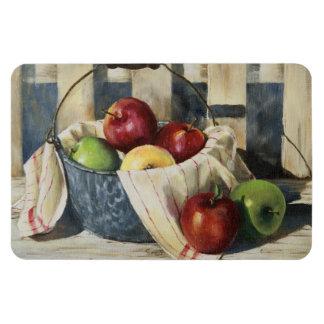 0449 Apples in Enamelware Pail Rectangular Photo Magnet