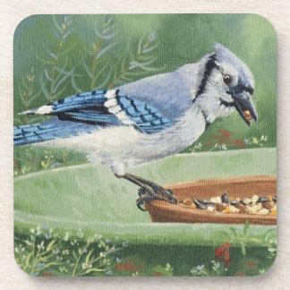 0481 Blue Jay at Feeder Coaster