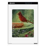 0487 Cardinal iPad Decals