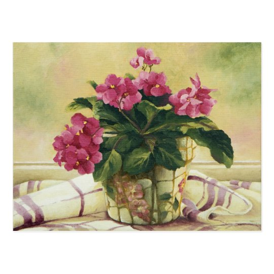 0511 African Violets in Mosaic Planter Postcard