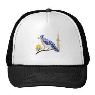05a Blu J Trucker Hat