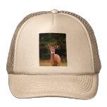 070306-34-AH HATS