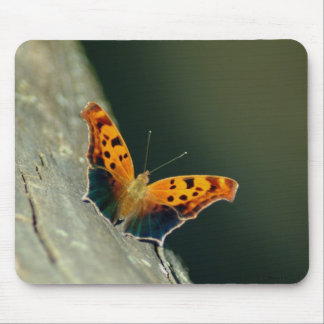 071609-211-AMP MOUSE PAD