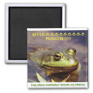 072606-3 THE FROG FORMERLY KNOWN AS PRINCE, COP... 2 INCH SQUARE MAGNET