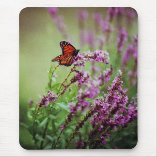 072806-52-AMP MOUSE PAD