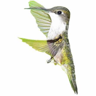 07-20-06 Hummingbirds0033ac Statuette