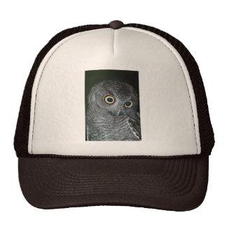 081609-21-AH HATS