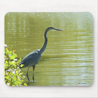091112-20 MOUSE PAD