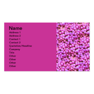 092106-grapes_light PINKS BUBBLE CIRCLES CANDY FUN Business Card