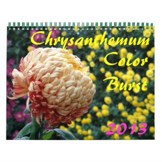 0 2013 Chrysanthemum Color Burst Calendar