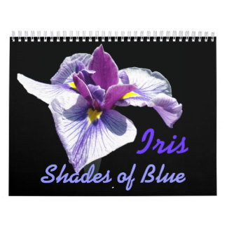 0 2013 Iris Shades of Blue Calendar