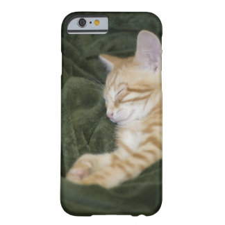 0 2 BARELY THERE iPhone 6 CASE