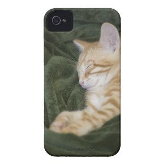 0 2 iPhone 4 CASE