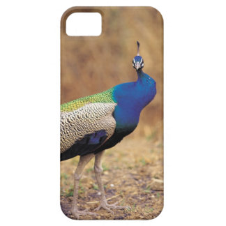 0 3 iPhone 5 COVERS
