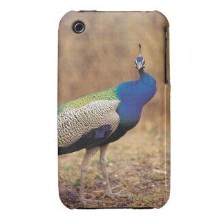 0 3 iPhone 3 Case-Mate CASES