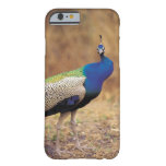 0 3 FUNDA DE iPhone 6 BARELY THERE