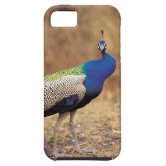 0 3 iPhone SE/5/5s CASE