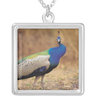 0 3 SILVER PLATED NECKLACE